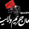 حمید رابعی در مسابقه مدافعان حریم ولایت برگزیده شد