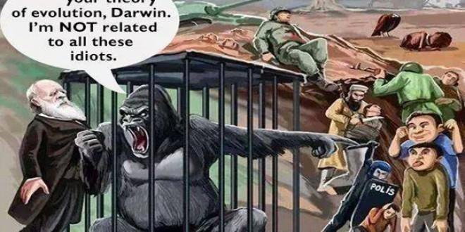 کاریکاتور/ اعتراض گوریلها به نظریه «جهش» داروین!