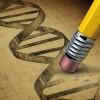 """آینده علم اصلاح ژنتیک، زمین را به """"سیارۀ میمونها"""" تبدیل می کند ؟!"""