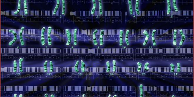 پایان تولیدنرم افزار تدوین بسته های آموزشی بر پایه نقشه ژنتیک