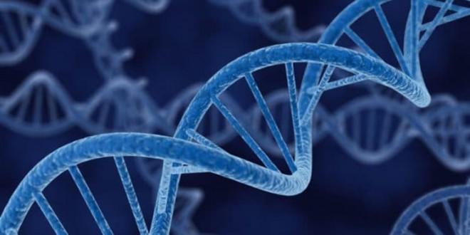 شبیه سازی دویست هزار شهید انقلاب مهدوی با همکاری سازمان علوم پزشکی