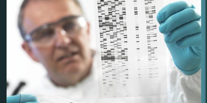 تصمیم وزارت کشاورزی مهدوی جهت استفاده از بانک ژنتیک خضر نبی