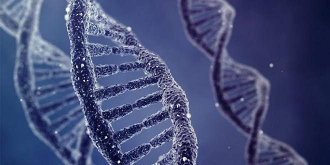 آخرین بیماری کشف شده موثر بر انسان درمان شد