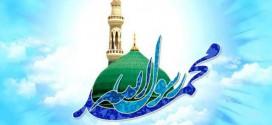 آيا پيامبر اسلام صلي الله عليه و آله وسلم بي سواد بودند ؟