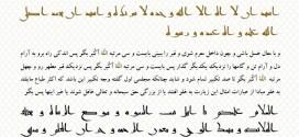 زیارت جامعه کبیره با دستخط امام هادی(ع) منتشر شد